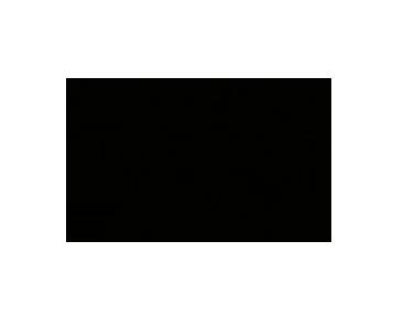 audi_logo 2