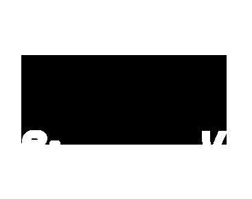 irizar_logo 2